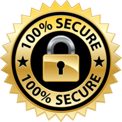 100% Secure Badge